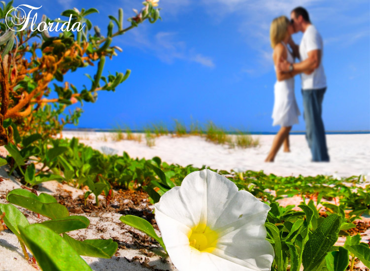 Florida - Sun and sand, and flowers on the beach, what more do I need when you're within reach.