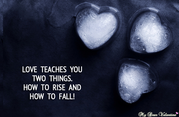 Love quotes - Love teaches us two things.