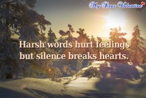 Sad love quotes - Harsh words hurt feelings but