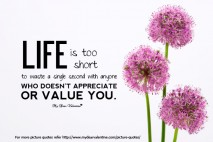 Life Quotes - Life is too short to waste