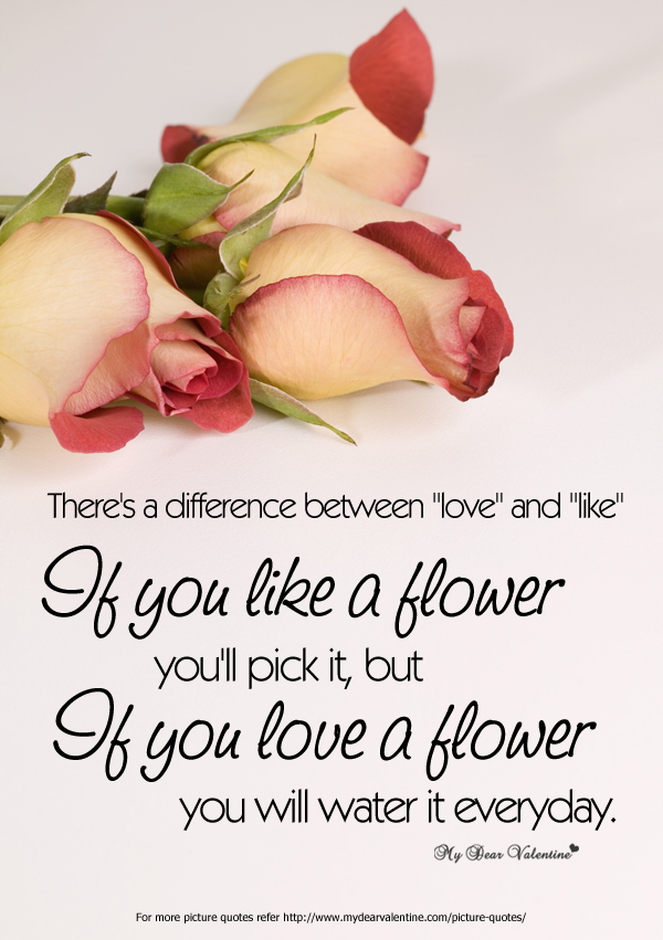 Amazing Love Quotes - There is a Difference between Love and Like