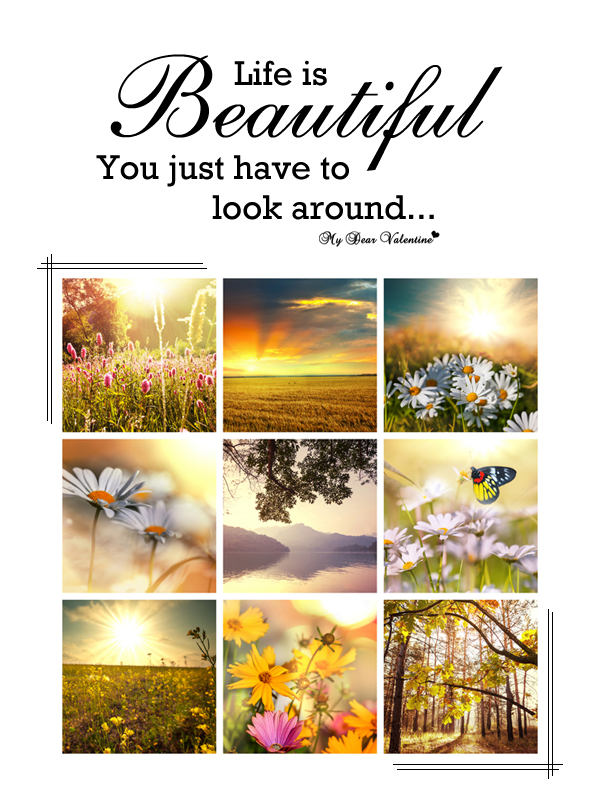Cute Life Quotes - Life is beautiful