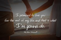 I Love You Quotes - I promised to love you
