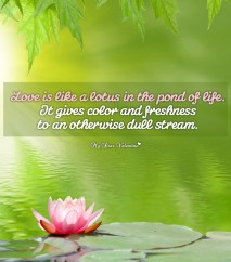 Inspirational Picture Quote - Lotus in the Pond