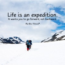 Life Picture Quotes - Life is an expedition
