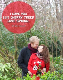 Love Picture Quote - Cheery trees love spring