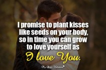 Love Picture Quotes for Him - I promise to plant kisses