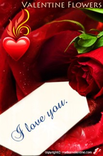 red rose with miss you note