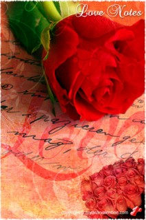 single rose with love note