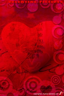 Deep Red Rose With A Love Message