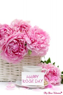 Valentine Picture - Happy Pink Rose Day