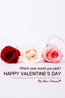 Which rose would you pick - Valentine Pictures
